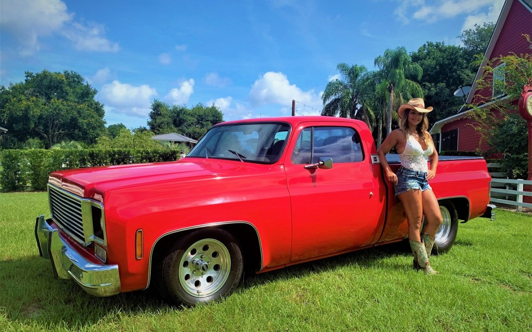 1977 Chevy Shortbed Pro Street Pick Up  $14900.00