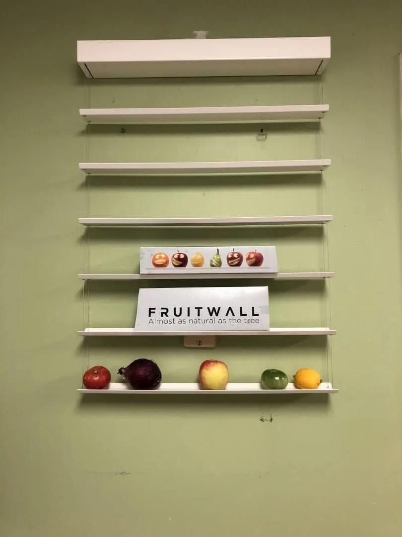 FRUITWALL HANGING ART