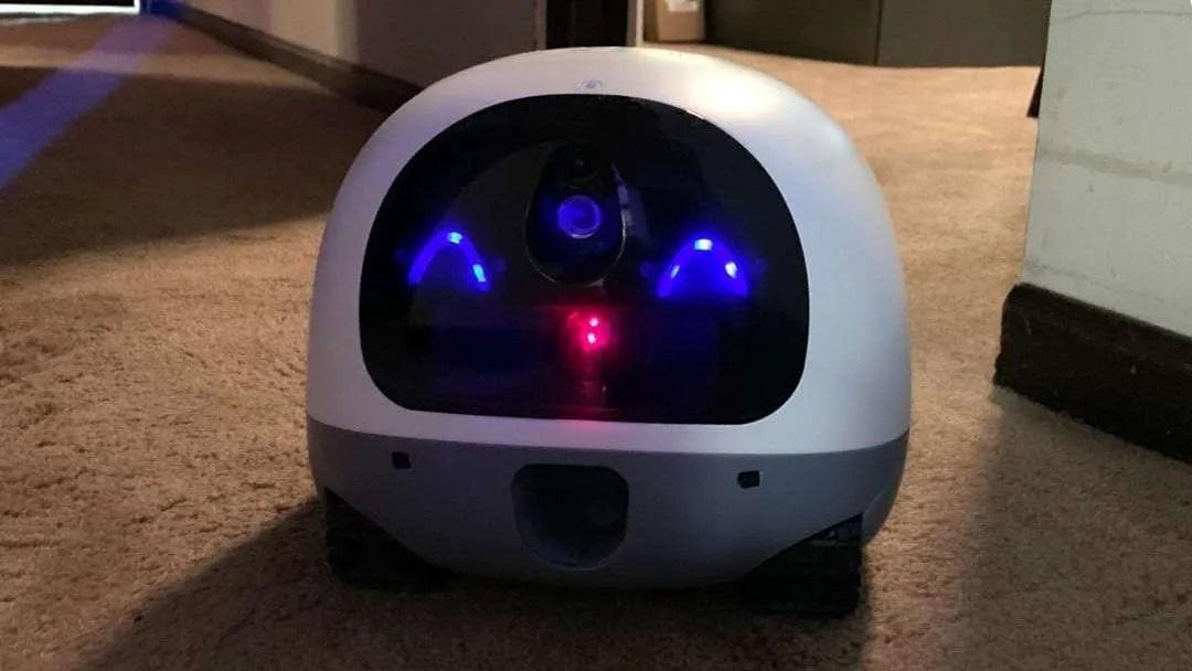 VAVA Mobile Pet Cam REVIEW