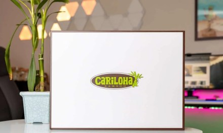 Cariloha Resort Bamboo Bed Sheets REVIEW