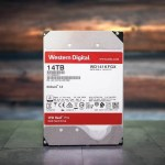 """14TB WD Red Pro 3.5"""" NAS HDD REVIEW"""