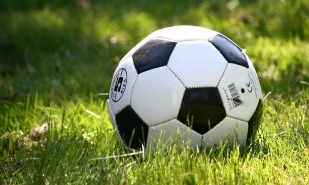 Spanish and Swedish Footballers – Who is More Exciting?