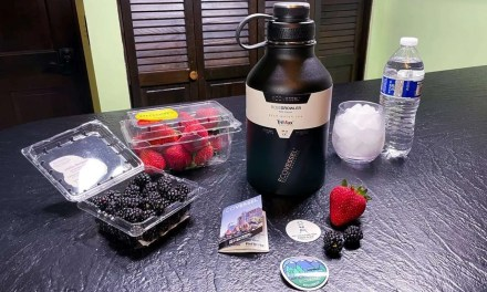EcoVessel BOSS Triple Insulated Stainless Steel Growler Bottle REVIEW