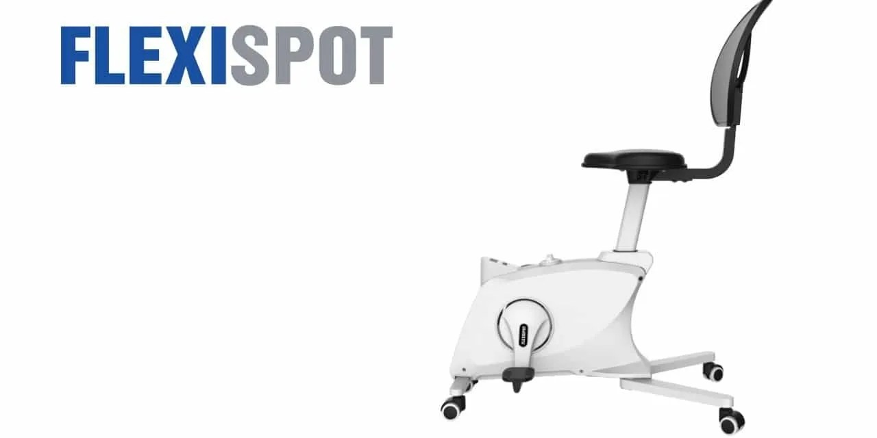 FLEXISPOT Sit2Go 2-in-1 Fitness Chair REVIEW