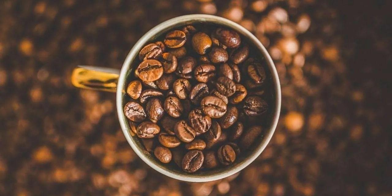 Espresso vs. Regular Coffee Grinder