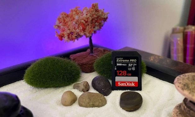 SanDisk Extreme PRO SDXC UHS-II Card REVIEW