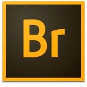 Adobe Bridge CC 2015 icon