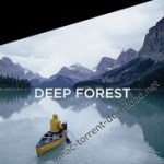phaseone latitude deep forest for capture one pro win8 macos