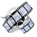 Any Video Converter Ultimate 6.1.10