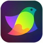 Amadine vector graphics design icon