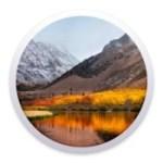 macOS High Sierra 10.13.4 [17E199] (Flash drive for installation) Legacy, UEFI, GPT