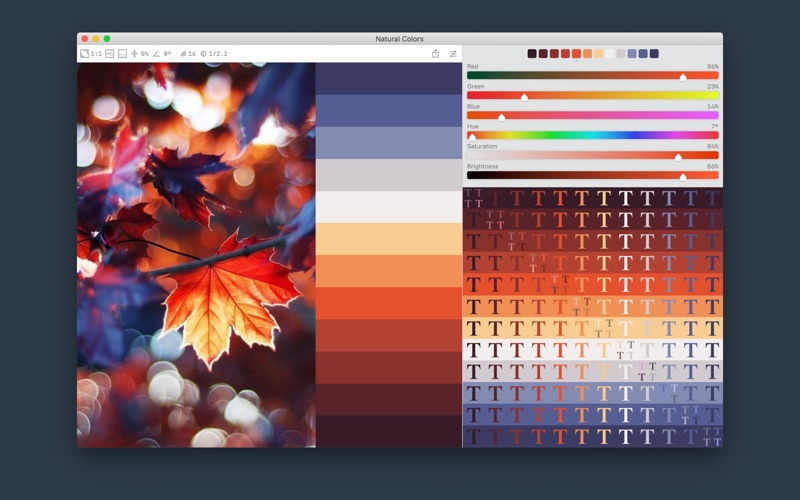 Color Palette from Image Screenshot 1