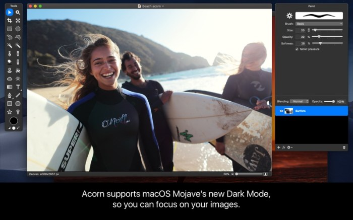 Acorn 6 Image Editor Screenshot 01 t84koy