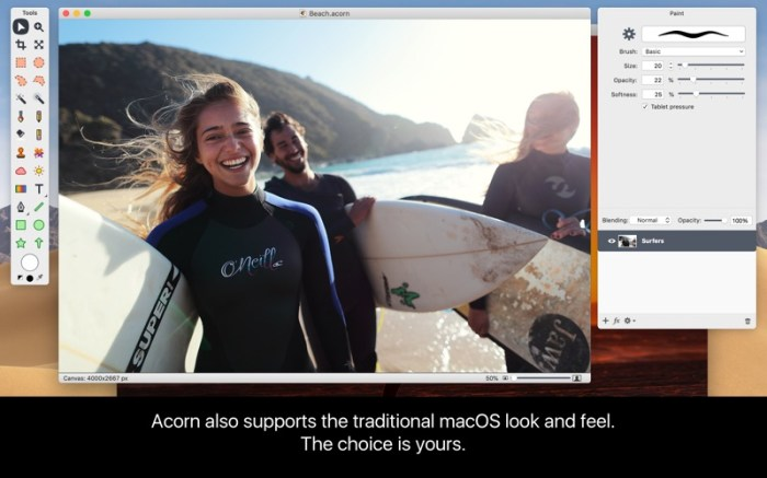 Acorn 6 Image Editor Screenshot 02 t84koy