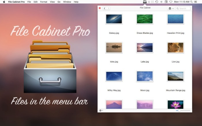 File Cabinet Pro Screenshot 01 n33jzwy