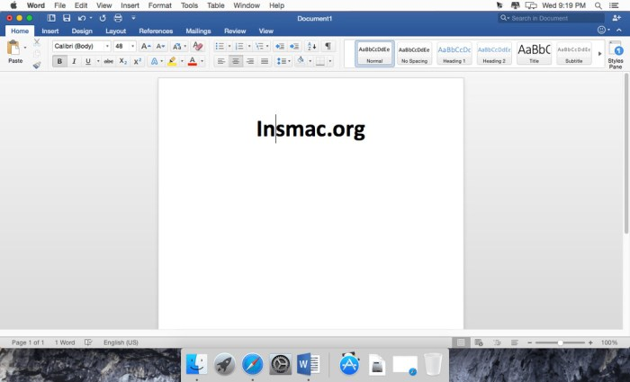Microsoft Office 2019 for Mac 1629 VL Multilingual Screenshot 03 1gwjpo0y