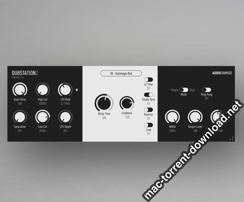 Audio Damage AD036 Dubstation 210a Screenshot 02 bn8qqby