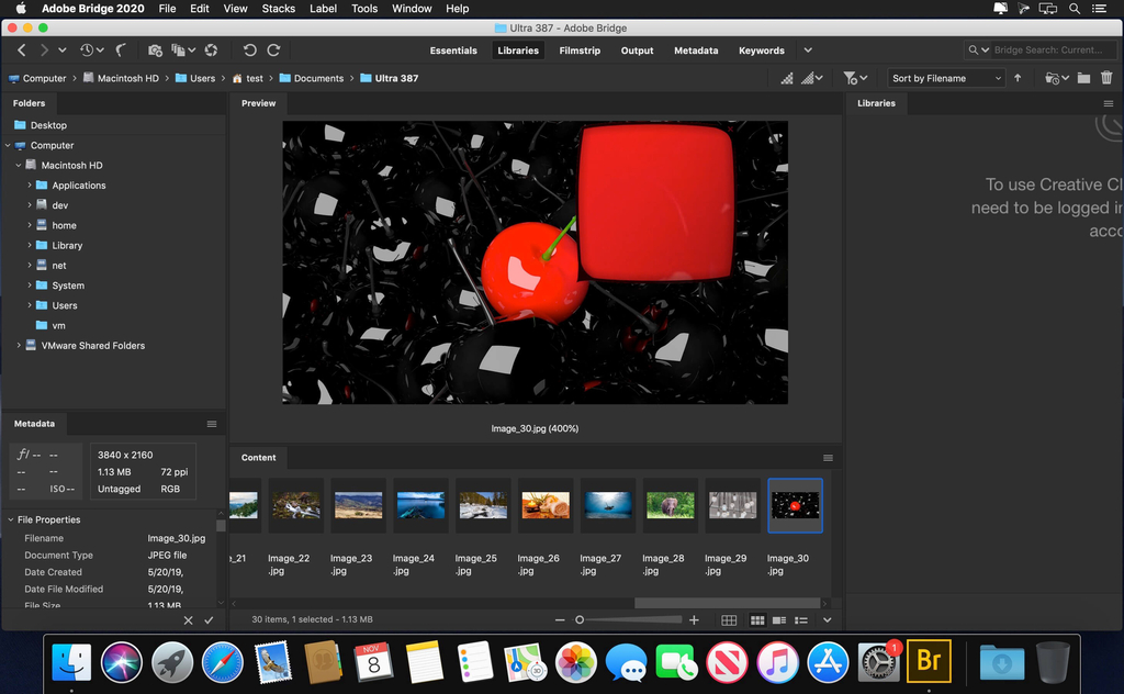 Adobe Bridge 2020 v1000124 Screenshot 01 m8axkiy