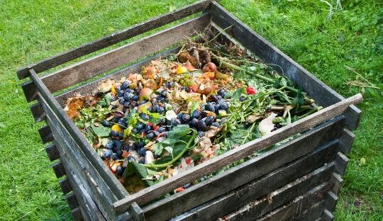 comment Réduire ses déchets alimentaire