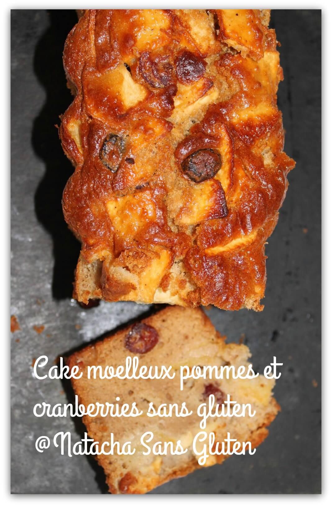 Cake moelleux aux pommes et cannerberges sans gluten