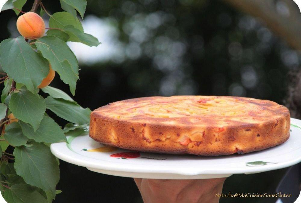 Gâteau aux abricots sans gluten