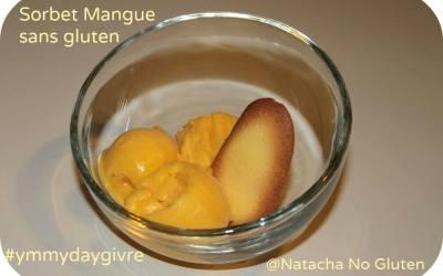 Sorbet Mangue sans gluten