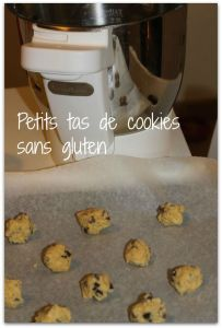 cookies-companion-petits-tas