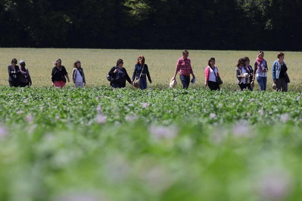 Le groupe dans les champs