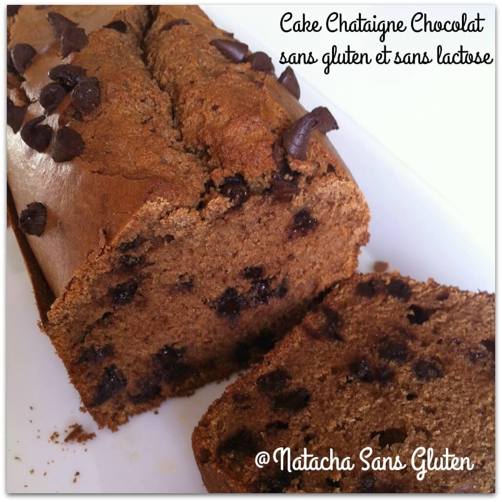 Cake Chataigne Chocolat sans gluten et sans lactose 2