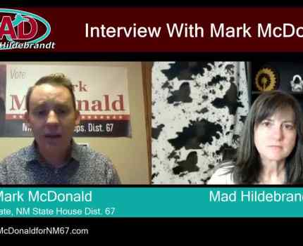 Clip 8 – Mark McDonald is the Democratic candidate …