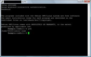 "PuTTY - Command ""pwd"""