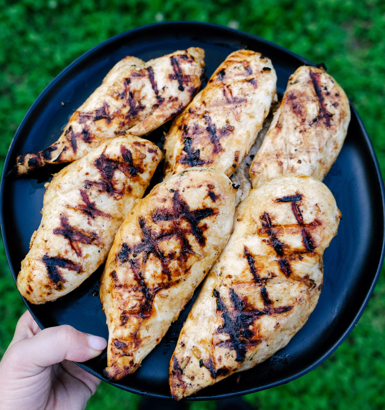 Above view of grilled ginger lime chicken on a serving plate outdoors
