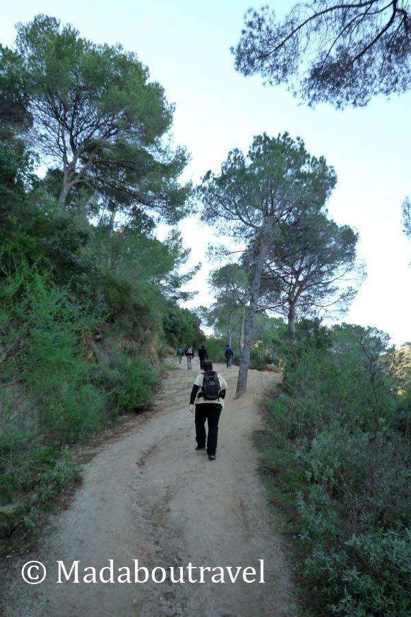 Subiendo pendientes hacia el Castillo de Burriac desde Argentona