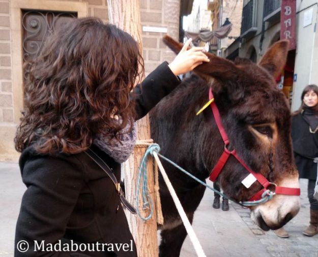 Intentando hacerme amiga de un burro en el Mercat Medieval de Vic