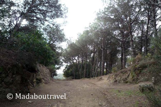 Bajando por la Serralada Litoral de vuelta a Santa Agnès de Malanyanes