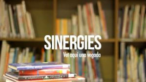 Programa Sinergies en Vallès Visió