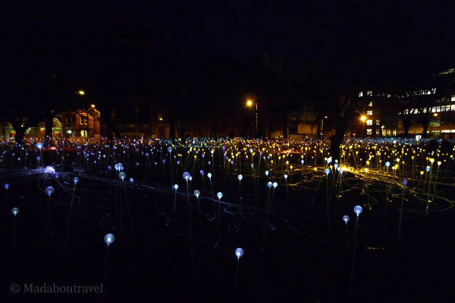 La instalación Field of Light de Bruce Munro en St. Andrews Square de Edimburgo