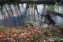 Ness Islands en otoño