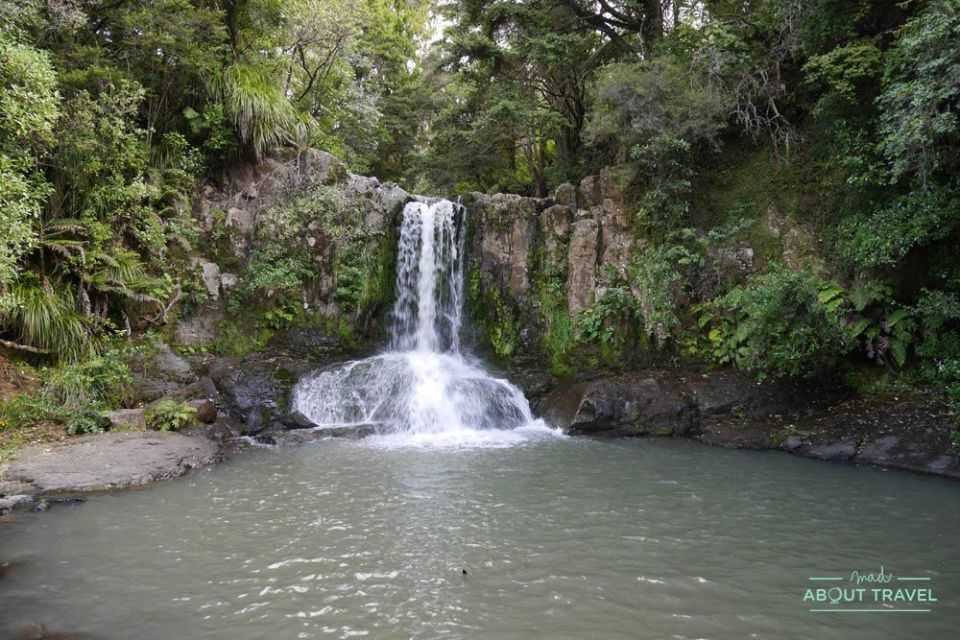 Cascadas de Waiau Falls en la península de Coromandel, Nueva zelanda