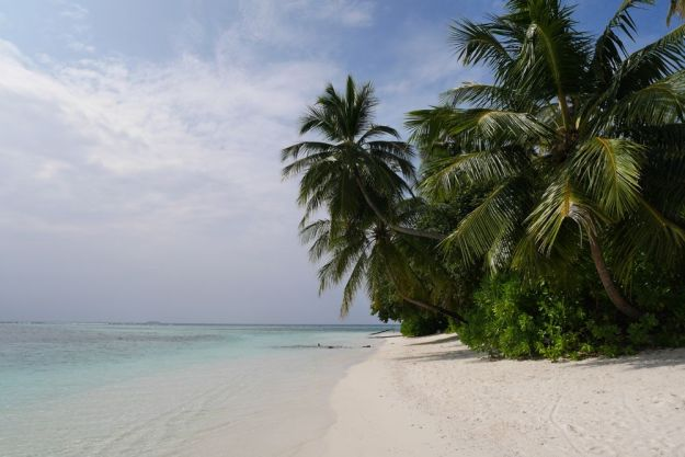 playa en angsana velavaru en maldivas
