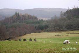 Círculo de piedras de KillinCírculo de piedras de Killin