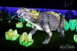 giant-lanterns-edinburgh-zoo-12