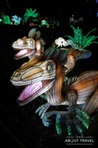 giant-lanterns-edinburgh-zoo-33