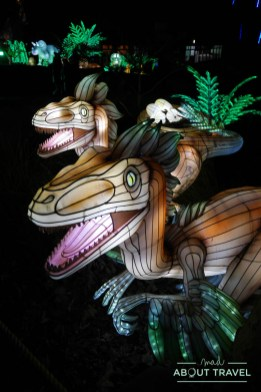 giant-lanterns-edinburgh-zoo-33