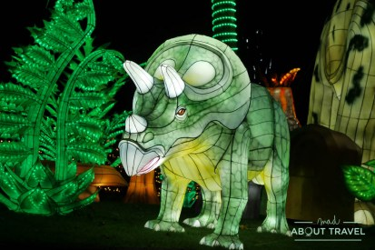 giant-lanterns-edinburgh-zoo-34