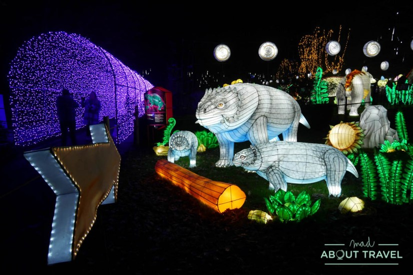 Giant Lanterns en el zoo de Edimburgo