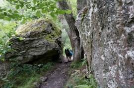 El pastor alemán Debo en el West Highland Way