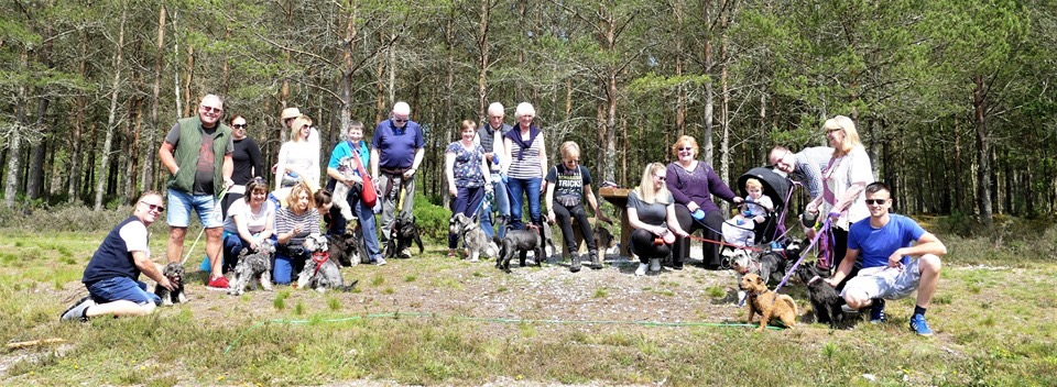 Schnauzers On Tour in Rosemarkie