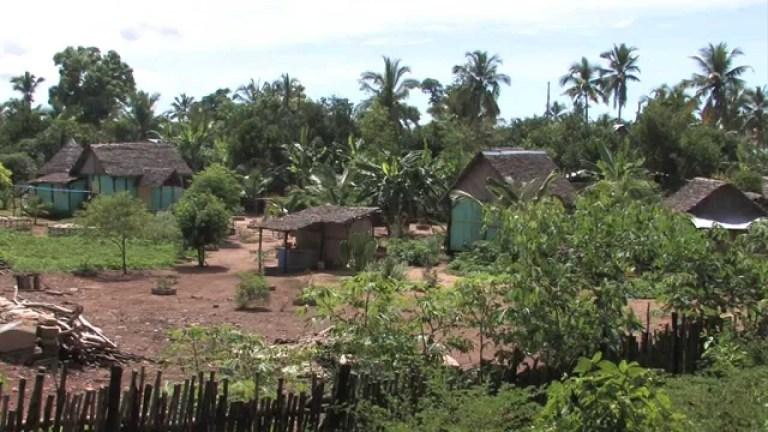 Madagascar (Documentary, Discovery, History)