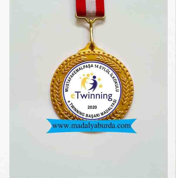 e Twinning başarı madalyası